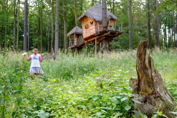 Vyhlídkový posed Sojčí hnízdo v korunách stromů